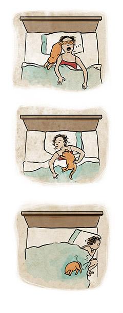 Figs_sleepingcats