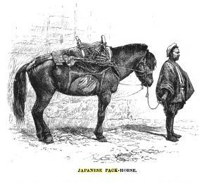 Japanese_pack_horse_and_saddle